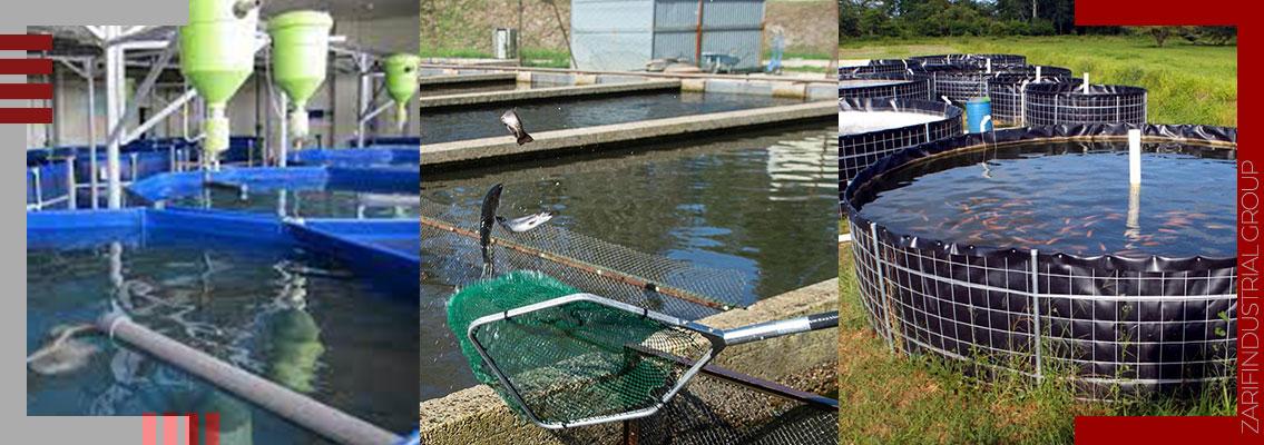 کاربرد ژئوممبران در استخر پرورش آبزیان - Aquatic breeding pool